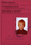 Legoland Drivers license. Click for larger image.